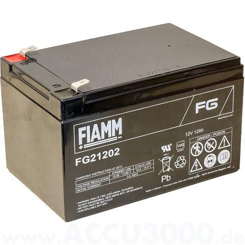 12V, 12.0Ah (C20), Fiamm FG21202